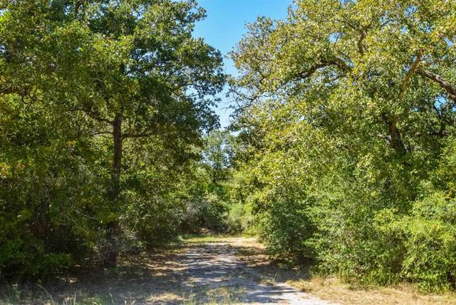 2123 Woodcreek Drive, Waelder, TX 78959 (MLS #11076657) :: NewHomePrograms.com LLC
