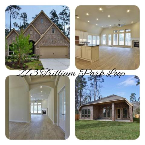 273 Trillium Park Loop, Conroe, TX 77301 (MLS #11120017) :: Montgomery Property Group