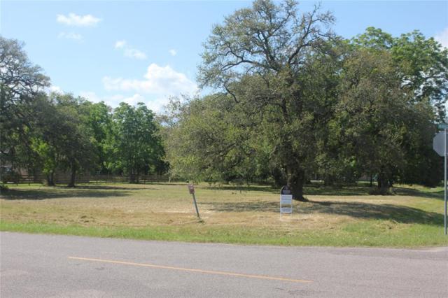 202 Mayad Boulevard, Rosharon, TX 77583 (MLS #11149815) :: Texas Home Shop Realty