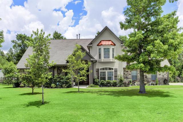 38210 Cascade Court, Magnolia, TX 77354 (MLS #11211855) :: Magnolia Realty