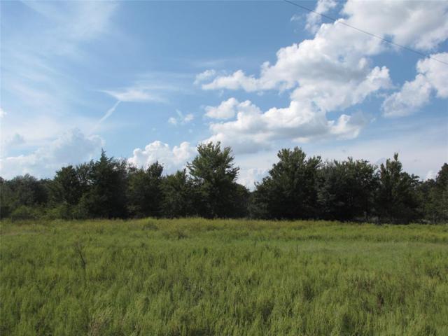 15701 Arhopulos Road Road, College Station, TX 77845 (MLS #11226769) :: Green Residential