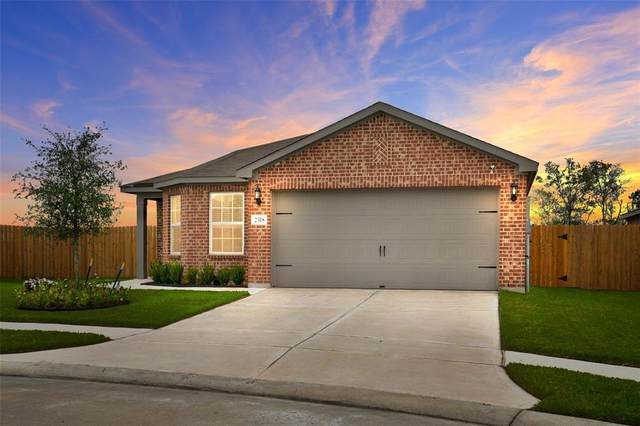 2318 Starboard Sail Drive, Texas City, TX 77568 (MLS #11236701) :: Green Residential