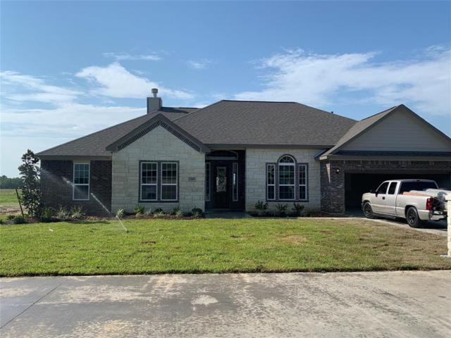 11418 Kings Point Boulevard, Mont Belvieu, TX 77535 (MLS #11282316) :: Giorgi Real Estate Group