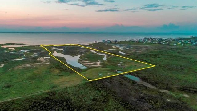 24024 Termini San Luis Pass Road, Galveston, TX 77554 (MLS #11308506) :: Caskey Realty