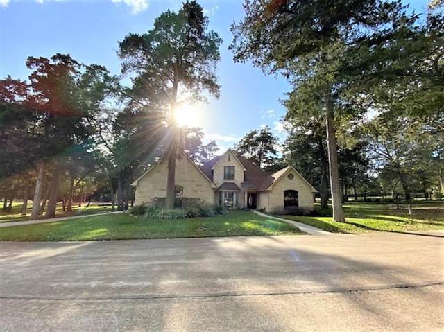 111 Oakmont Drive, New Ulm, TX 78950 (MLS #11382735) :: The Bly Team