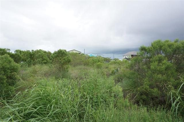 3510 County Road 202 Gulfview Drive, Sargent, TX 77414 (MLS #11399983) :: Magnolia Realty