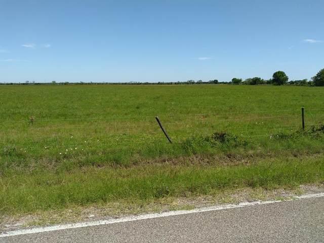 TRACT 1C County Road 210, Danbury, TX 77534 (MLS #11405383) :: Bray Real Estate Group