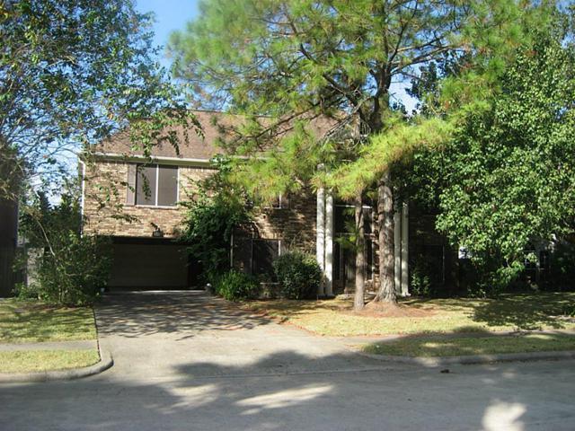 1714 Karankawas Court, Deer Park, TX 77536 (MLS #11436643) :: The SOLD by George Team