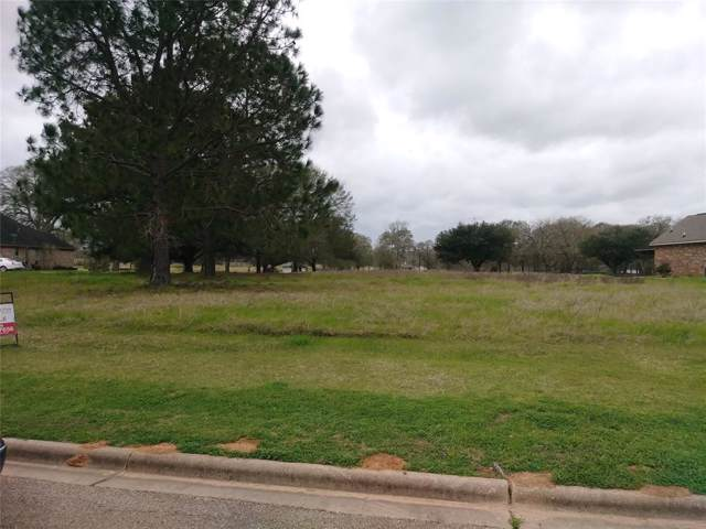325 Mavanelle Cove, Hempstead, TX 77445 (MLS #11442584) :: The Heyl Group at Keller Williams