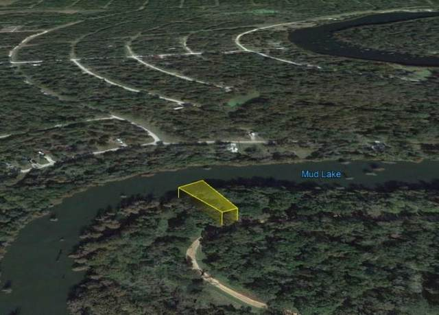 00 Lakeview Drive, Cleveland, TX 77327 (MLS #11452435) :: Connect Realty