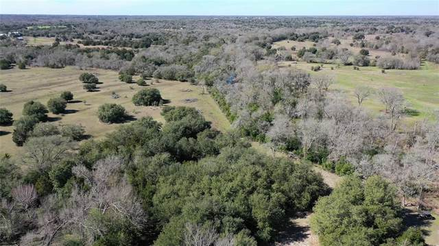 1240 S Weyand Road, Round Top, TX 78954 (MLS #11493559) :: NewHomePrograms.com LLC
