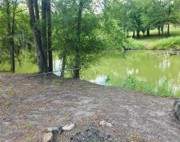 19 Harmon Creek Drive, Huntsville, TX 77320 (MLS #11520067) :: Area Pro Group Real Estate, LLC