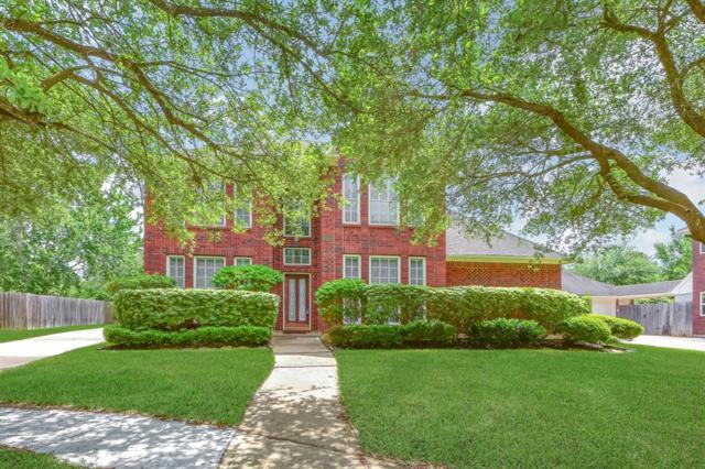16607 Chestnut Meadow Court, Sugar Land, TX 77479 (MLS #11553950) :: Christy Buck Team