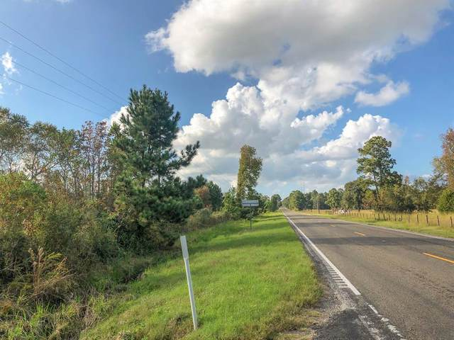 00 Hwy 75, Huntsville, TX 77320 (MLS #11563884) :: My BCS Home Real Estate Group