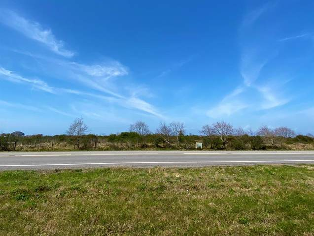 000 Hwy 87, Crystal Beach, TX 77650 (MLS #11680009) :: The Queen Team