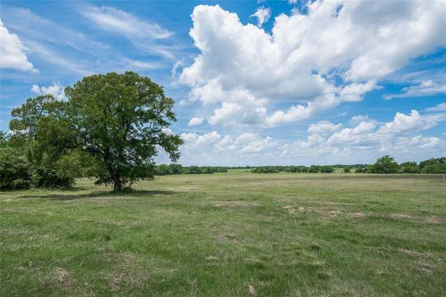 0300 Cr 446, Navasota, TX 77868 (MLS #11727026) :: The Sansone Group