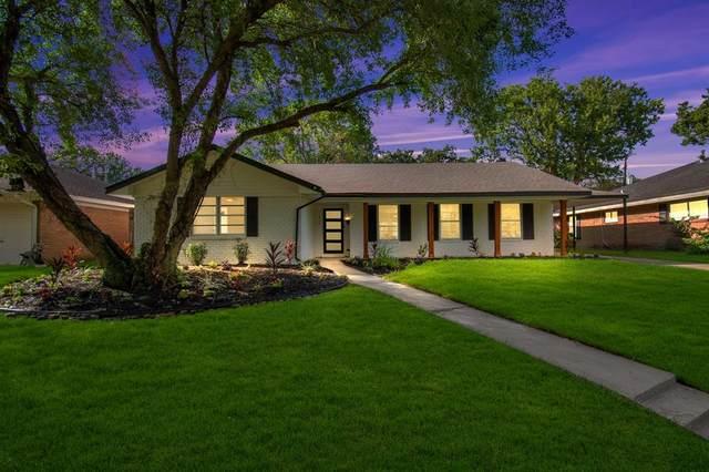 11018 Endicott Lane, Houston, TX 77035 (MLS #11734835) :: Connect Realty