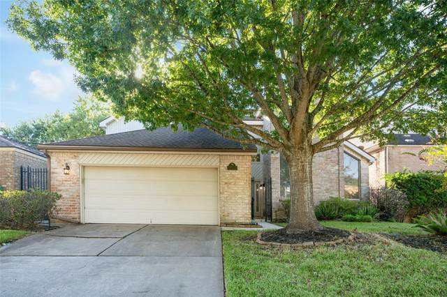 1102 Forest Home Drive, Houston, TX 77077 (MLS #11756556) :: The Bly Team