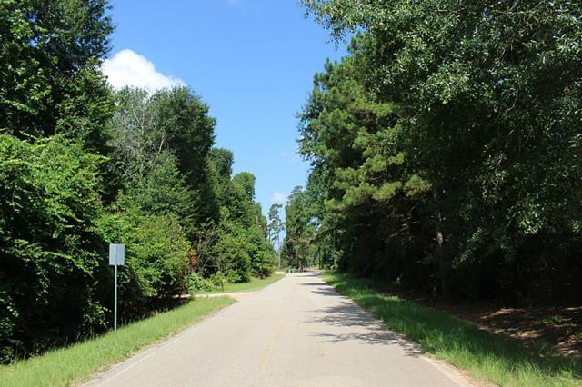 7816 Black Oak, Magnolia, TX 77354 (MLS #11764750) :: Texas Home Shop Realty