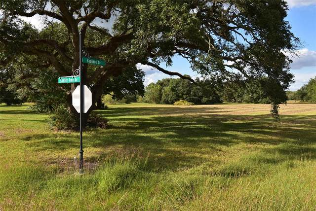 55 Center Tree Drive, Blessing, TX 77419 (MLS #11765558) :: Caskey Realty