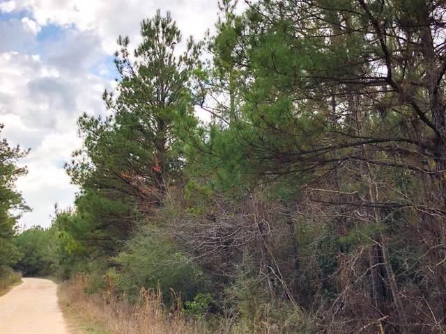 00 Tom Marsh Road, Livingston, TX 77351 (MLS #11896945) :: The SOLD by George Team