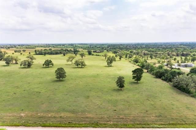 01 Sparta Field Road, Waelder, TX 78959 (MLS #11905347) :: Guevara Backman