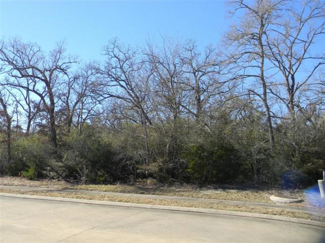 3407 Chinquapin Court, Bryan, TX 77807 (MLS #11912626) :: Texas Home Shop Realty