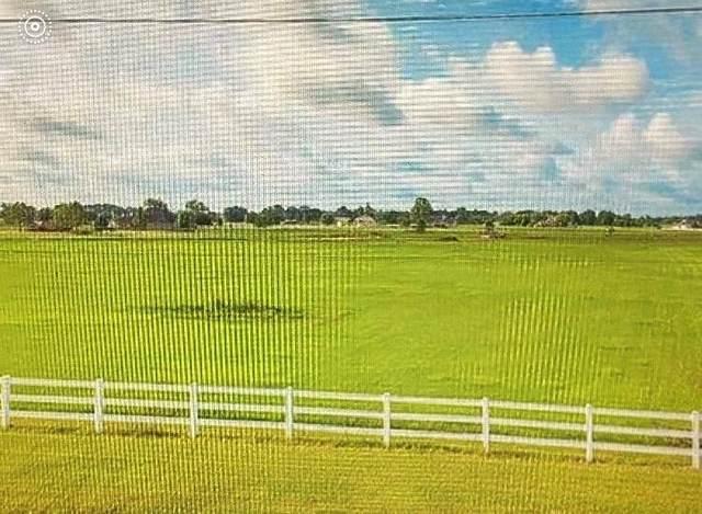 3119 Fm 1462 Road, Rosharon, TX 77583 (MLS #11934307) :: My BCS Home Real Estate Group