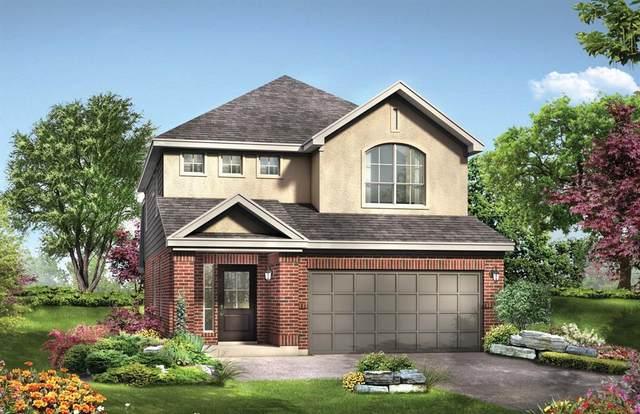 31211 Balsam Hawk Lane, Hockley, TX 77447 (MLS #12001647) :: Caskey Realty