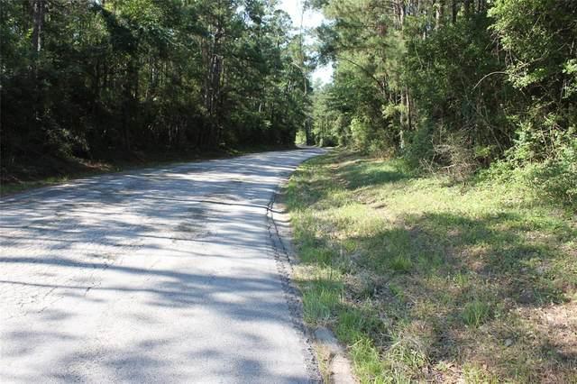 239 Triple Creek Loop, Livingston, TX 77351 (MLS #12005707) :: The Sansone Group
