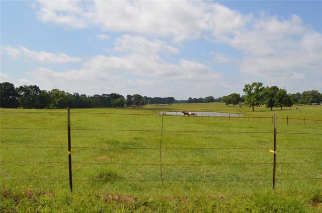 768 Cr 2126, Crockett, TX 75835 (MLS #12053911) :: The Heyl Group at Keller Williams