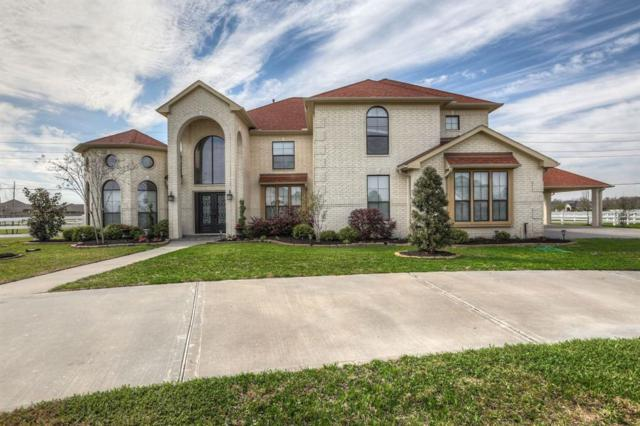 6718 Cartwright Court, Rosenberg, TX 77469 (MLS #12078167) :: Team Sansone