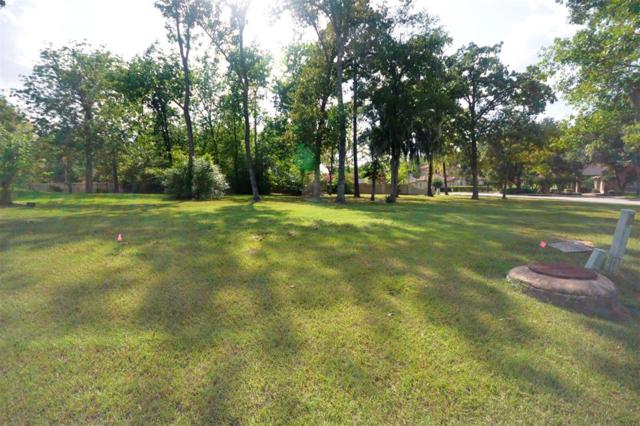 23 Ruskin Drive W, Montgomery, TX 77356 (MLS #12097172) :: The SOLD by George Team