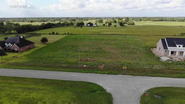 Lot 09 & 10 Crescent Cross Drive, Needville, TX 77461 (MLS #12102867) :: Homemax Properties