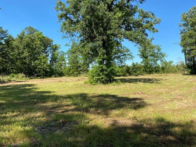 TBD Cr 1172, Kennard, TX 75847 (MLS #12139806) :: Ellison Real Estate Team