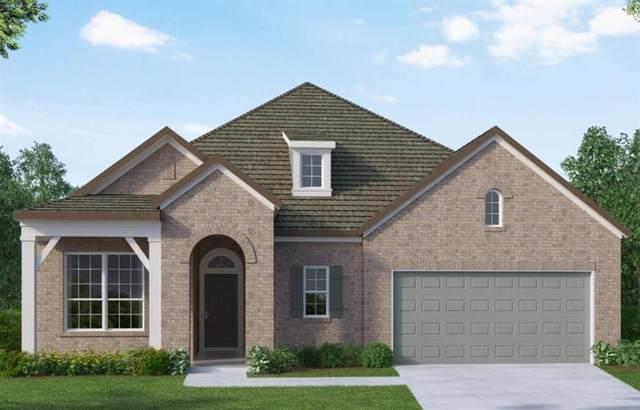 10211 Napier Drive, Iowa Colony, TX 77583 (MLS #12157588) :: Christy Buck Team