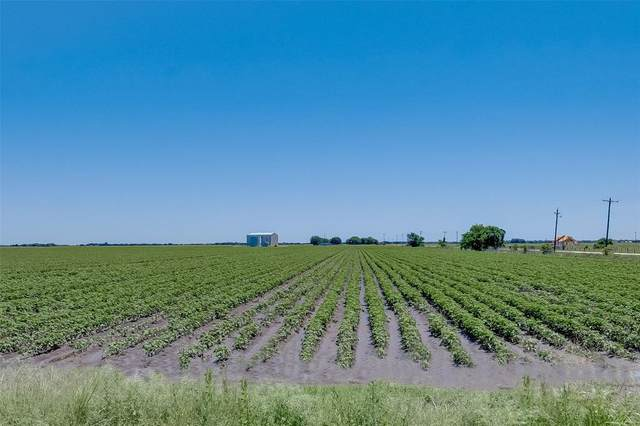 Tract 2 Mayberry Road, Needville, TX 77461 (MLS #12168647) :: Ellison Real Estate Team