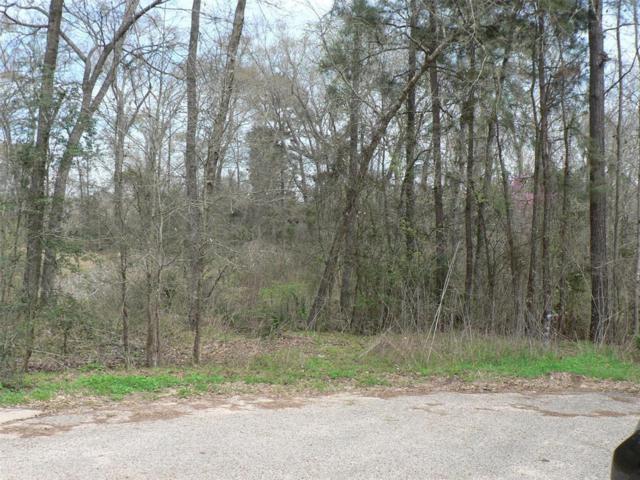 13234 Huck Finn, Willis, TX 77318 (MLS #12195846) :: The Home Branch
