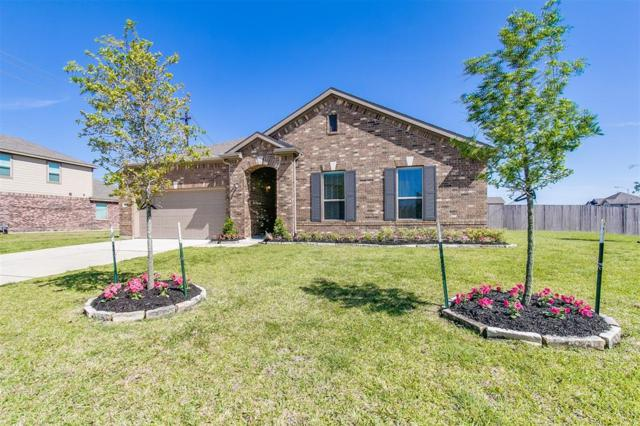 3999 Canterbury Park Lane, Pearland, TX 77584 (MLS #12201260) :: Texas Home Shop Realty
