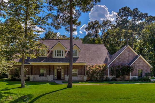 9 Double Creek Court, Willis, TX 77378 (MLS #12326424) :: See Tim Sell