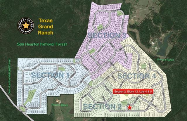 2-12-4&5 Remington Road, Huntsville, TX 77340 (MLS #12340417) :: The Johnson Team