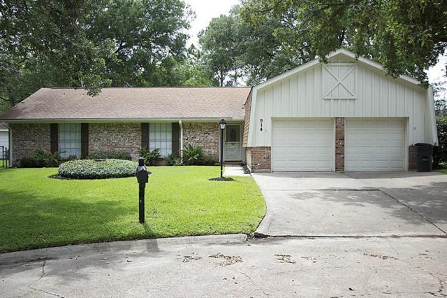 914 Oak Vista Court, Friendswood, TX 77546 (MLS #1245936) :: Christy Buck Team