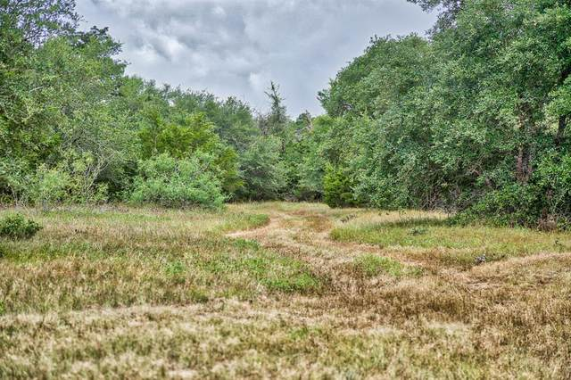 760 Carmine Cemetery Road, Carmine, TX 78932 (MLS #12524290) :: The SOLD by George Team