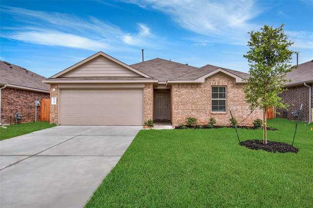 21251 Ivy Woods Court, New Caney, TX 77357 (MLS #12633118) :: The Bly Team