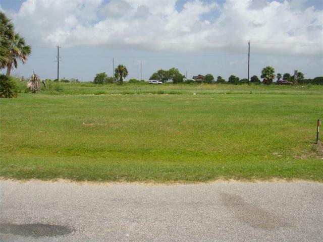 2021 Flamingo Drive, Crystal Beach, TX 77650 (MLS #12713378) :: The SOLD by George Team