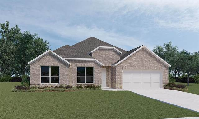 14116 Emory Peak Court, Conroe, TX 77384 (MLS #12821775) :: The SOLD by George Team