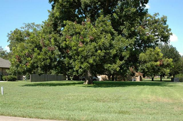 4514 Wentworth Drive, Fulshear, TX 77441 (MLS #12835435) :: See Tim Sell