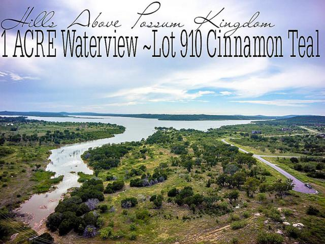 Lot 910 Cinnamon Teal, GRAFORD, TX 76449 (MLS #12850404) :: TEXdot Realtors, Inc.
