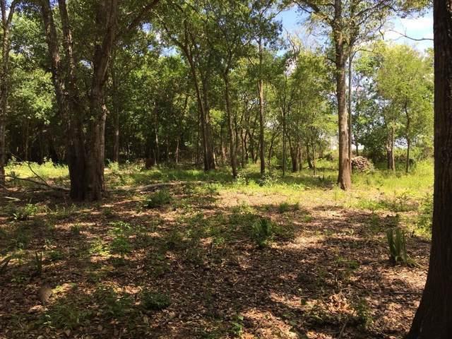 TBD Bayou Dr County Road 848, Danbury, TX 77534 (MLS #12867372) :: Green Residential