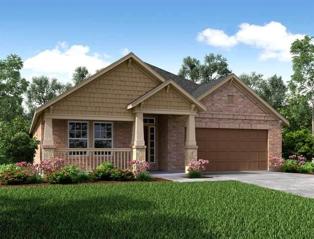 8719 Mugwort Drive, Rosenberg, TX 77469 (MLS #12875091) :: The SOLD by George Team